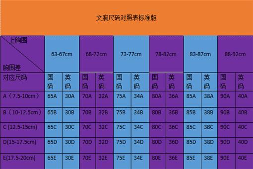 文胸尺码对照表标准版详解