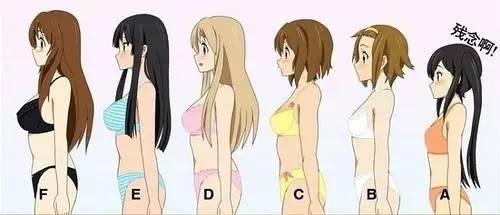 文胸abc有什么区别